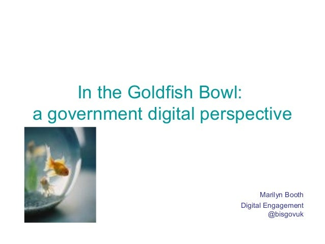 In the Goldfish Bowl: a government digital perspective Marilyn Booth Digital Engagement @bisgovuk