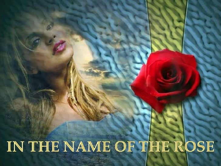 IN THE NAME OF THE ROSE<br />