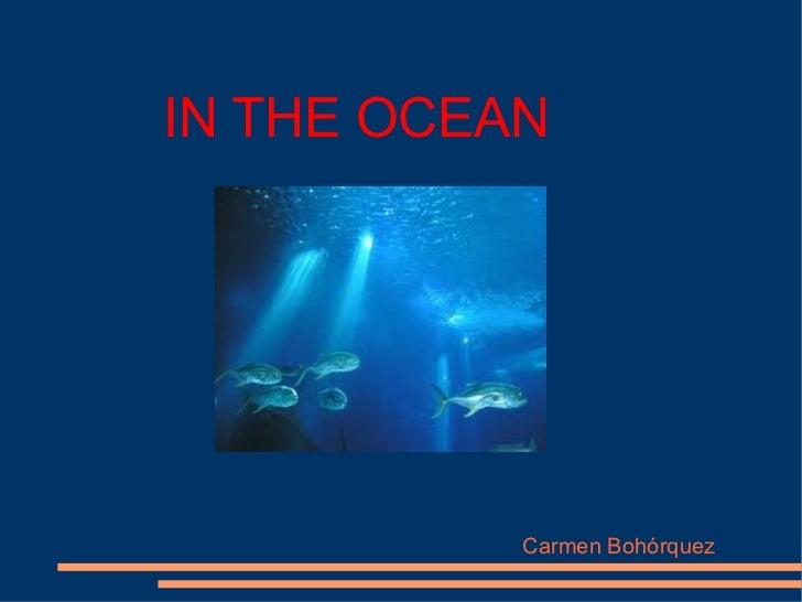 IN THE OCEAN           Carmen Bohórquez