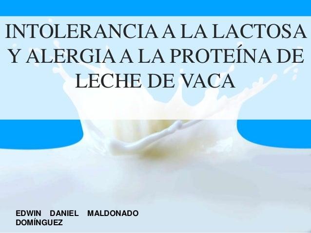 INTOLERANCIAA LA LACTOSA Y ALERGIAA LA PROTEÍNA DE LECHE DE VACA EDWIN DANIEL MALDONADO DOMÍNGUEZ
