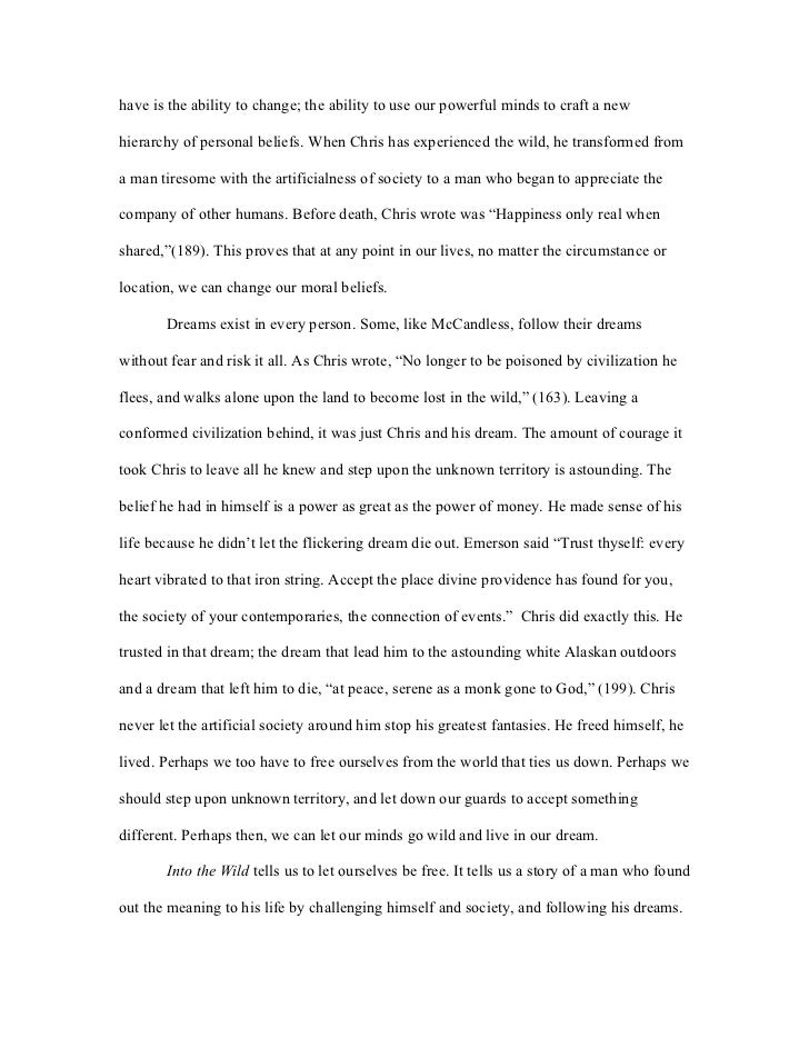 the wild essay into the wild essay