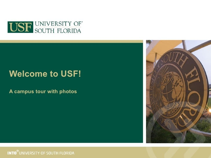 Welcome to USF! A campus tour with photos
