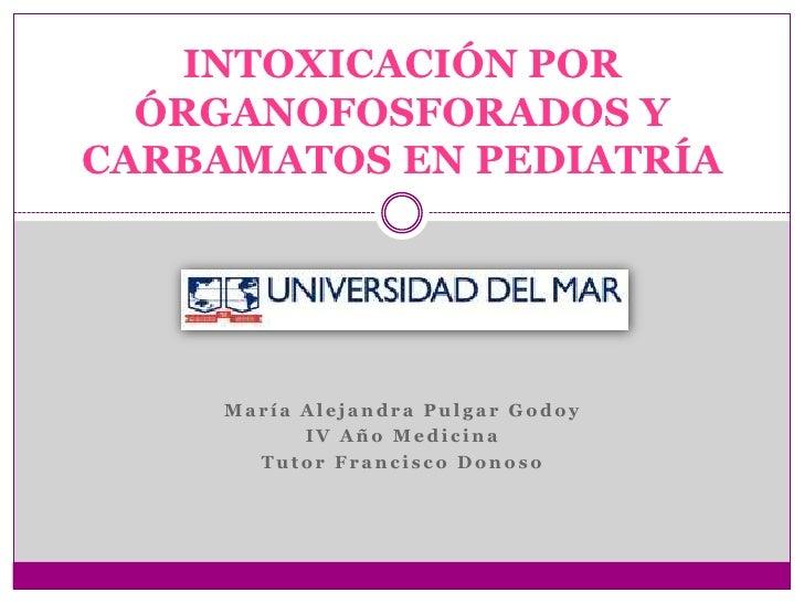 María Alejandra Pulgar Godoy<br />IV Año Medicina<br />Tutor Francisco Donoso<br />INTOXICACIÓN POR ÓRGANOFOSFORADOS Y CAR...