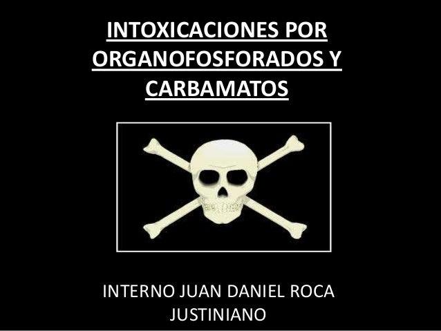 INTOXICACIONES POR ORGANOFOSFORADOS Y CARBAMATOS  INTERNO JUAN DANIEL ROCA JUSTINIANO