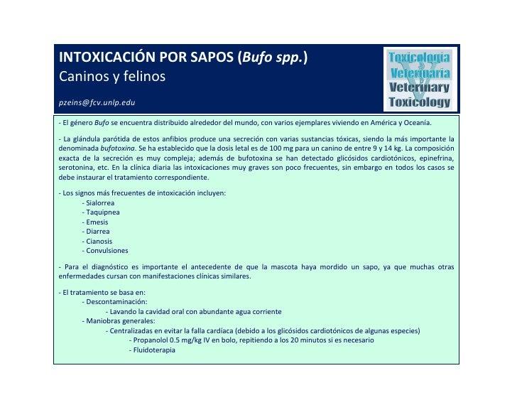 INTOXICACIÓN POR SAPOS (Bufo spp.)Caninos y felinospzeins@fcv.unlp.edu- El género Bufo se encuentra distribuido alrededor ...