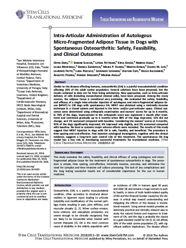 Intra-Articular Administration of Autologous Micro-Fragmented Adipose Tissue in Dogs with Spontaneous Osteoarthritis: Safe...