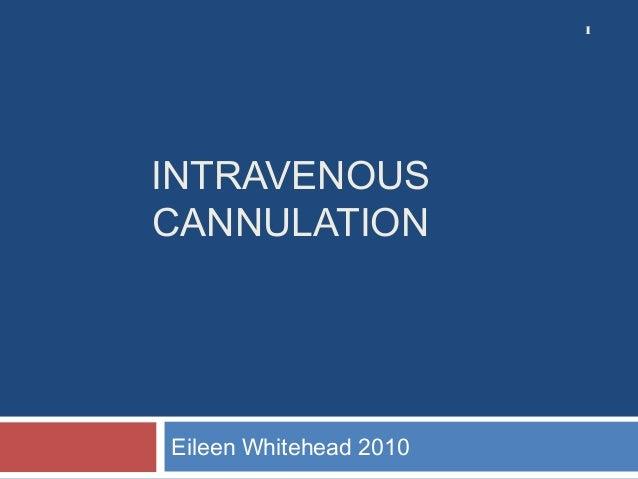 INTRAVENOUS CANNULATION Eileen Whitehead 2010 1