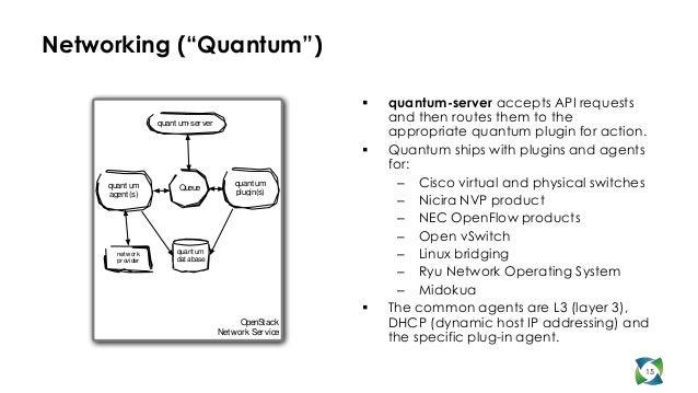 """Networking (""""Quantum"""")                                                              quantum-server accepts API requests  ..."""