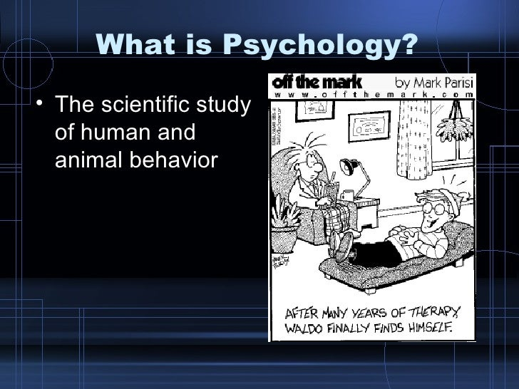 What is Psychology? <ul><li>The scientific study of human and animal behavior </li></ul>