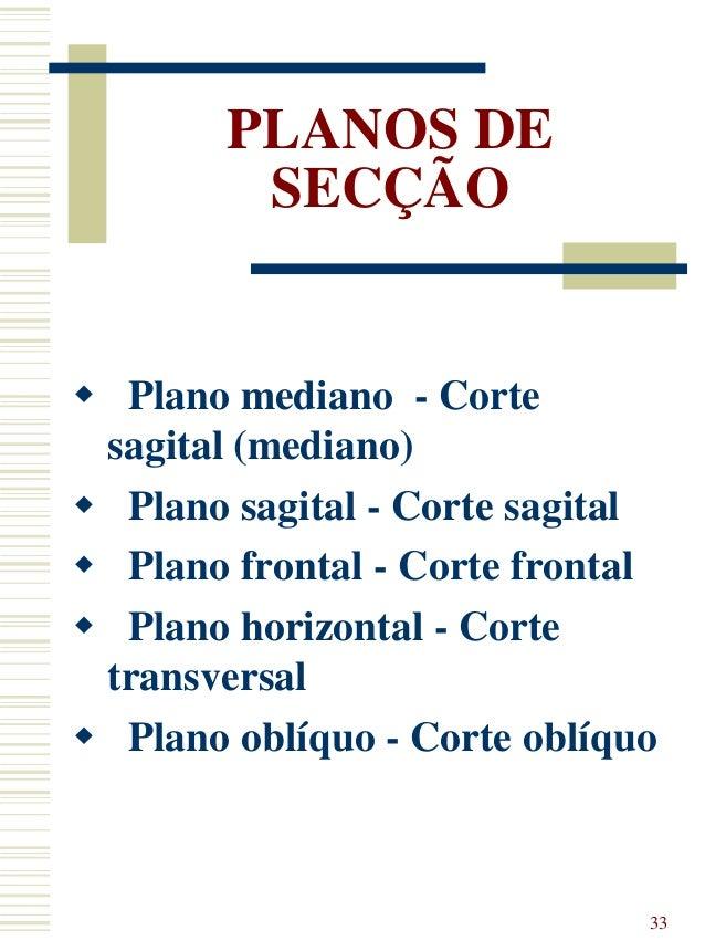 Fantástico Plano Oblicuo Definición Anatomía Colección - Anatomía de ...