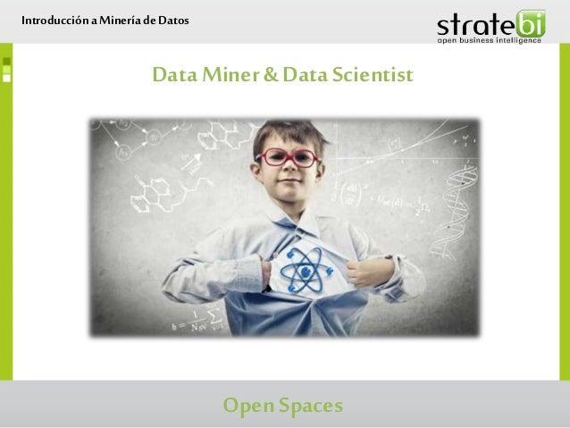 Data Miner& Data Scientist Introduccióna Minería de Datos Open Spaces