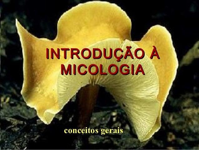 INTRODUÇÃO ÀINTRODUÇÃO À MICOLOGIAMICOLOGIA conceitos geraisconceitos gerais