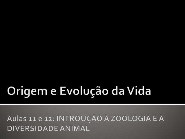 """O que é Zoologia? Quais são as características de um animal? E de um """"invertebrado""""? Quem são os animais? De que forma os ..."""