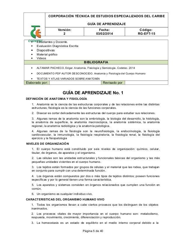 Famoso Anatomía Y Fisiología Capítulo 1 Organización De Las ...