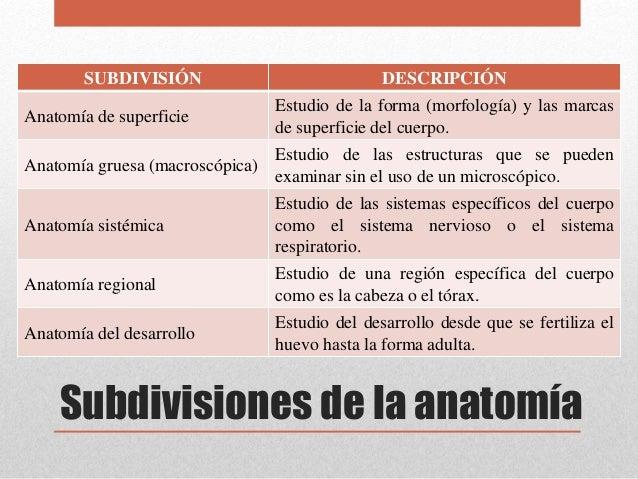 Introducción a la Anatomía y Fisiología Humana