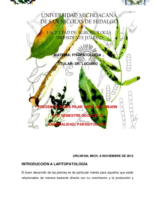 UNIVERSIDAD MICHOACANA             DE SAN NICOLAS DE HIDALGO                  FACULTAD DE AGROBIOLOGIA                    ...