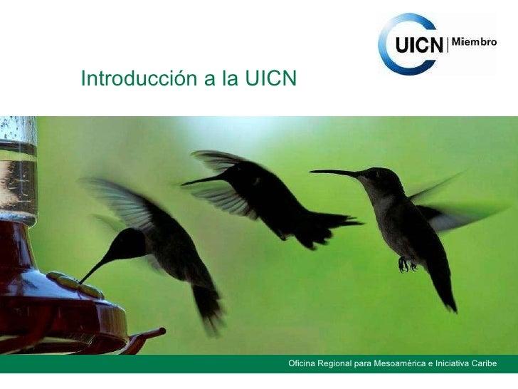 Introducción a la UICN
