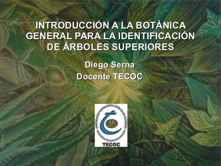 INTRODUCCIÓN A LA BOTÁNICA GENERAL PARA LA IDENTIFICACIÓN DE ÁRBOLES SUPERIORES Diego Serna Docente TECOC