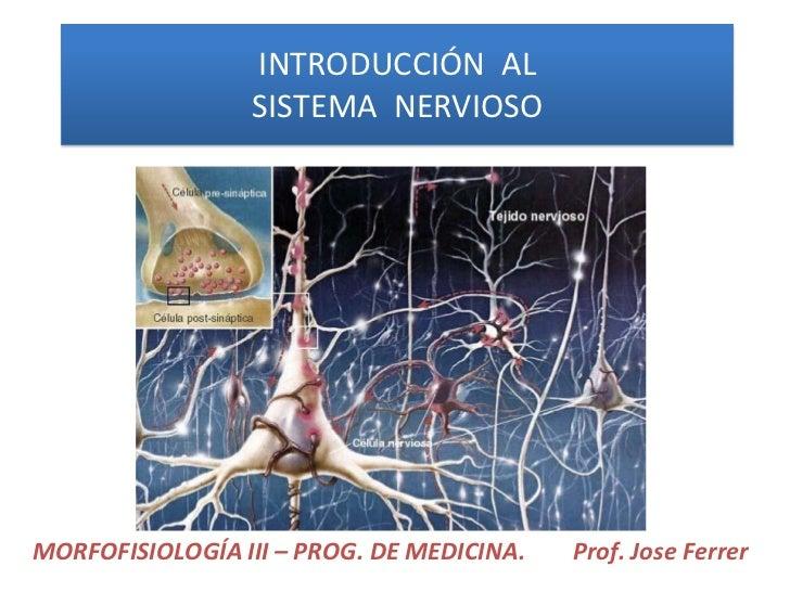 INTRODUCCIÓN AL                 SISTEMA NERVIOSOMORFOFISIOLOGÍA III – PROG. DE MEDICINA.   Prof. Jose Ferrer