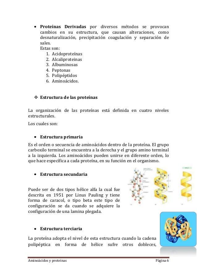 Aminoácidos y proteinas Página 6Proteínas Derivadas por diversos métodos se provocancambios en su estructura, que causan a...