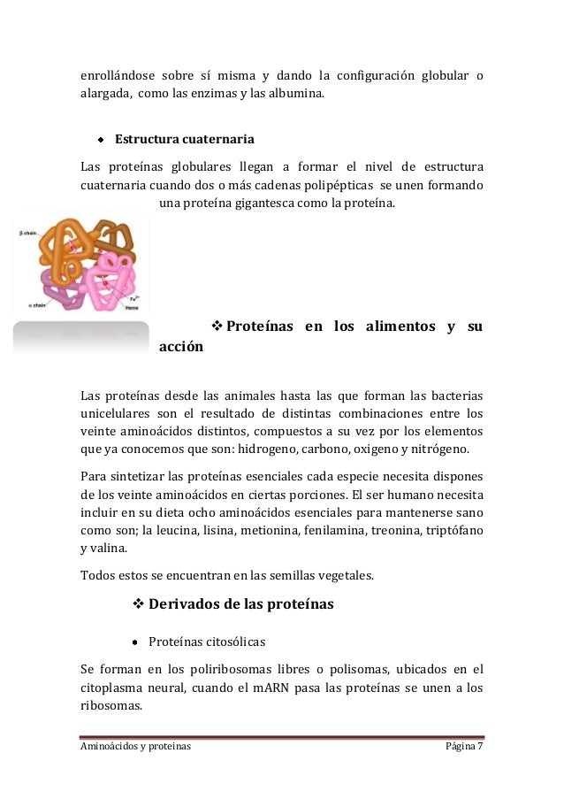 Aminoácidos y proteinas Página 7enrollándose sobre sí misma y dando la configuración globular oalargada, como las enzimas ...