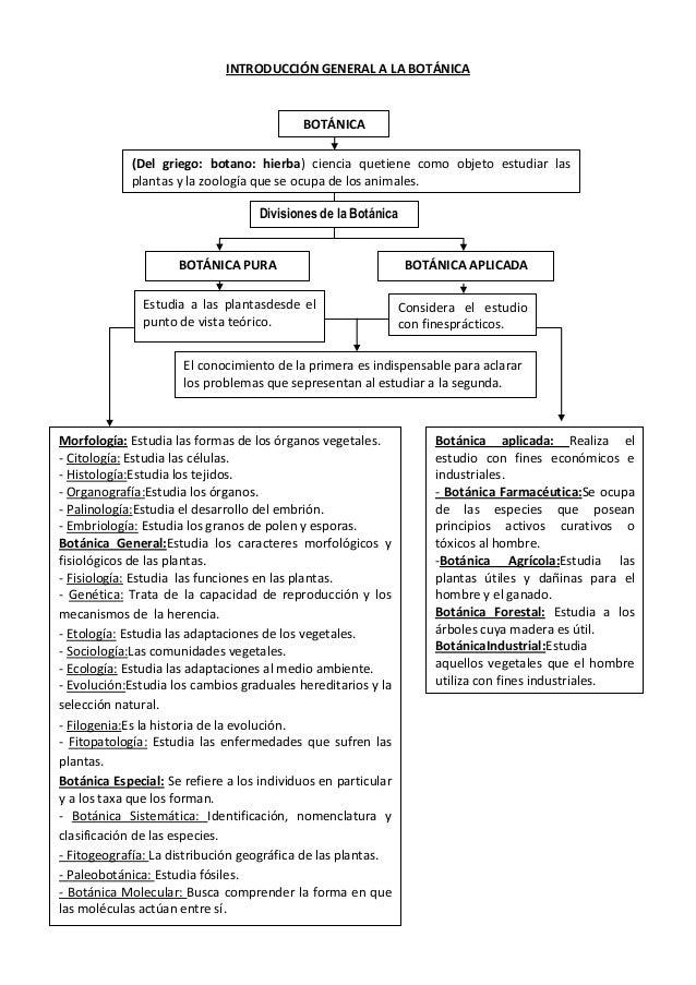 INTRODUCCIÓN GENERAL A LA BOTÁNICA  BOTÁNICA (Del griego: botano: hierba) ciencia quetiene como objeto estudiar las planta...