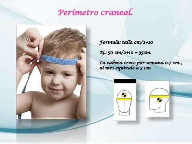 examen fisico de cabeza Slide 3