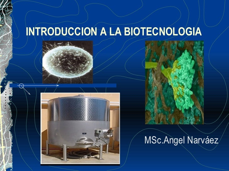 INTRODUCCION A LA BIOTECNOLOGIA MSc.Angel Narváez