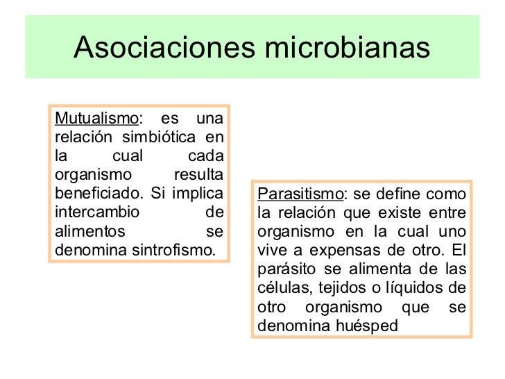 Los tipos de los parásitos en el organismo de la persona de la foto