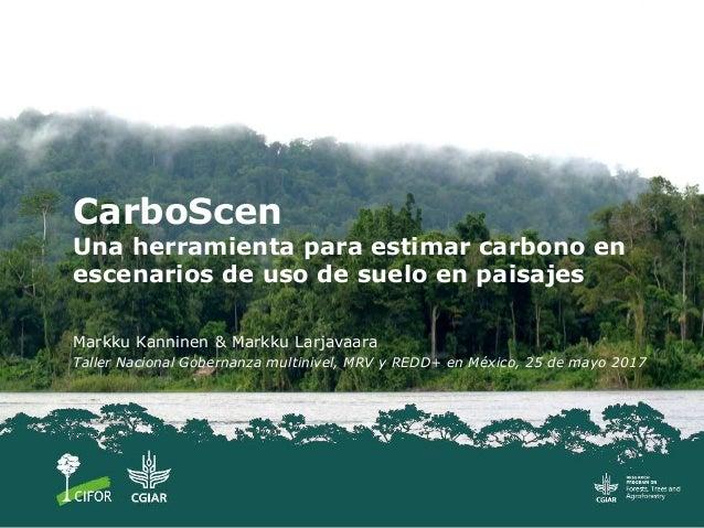 CarboScen Una herramienta para estimar carbono en escenarios de uso de suelo en paisajes Markku Kanninen & Markku Larjavaa...