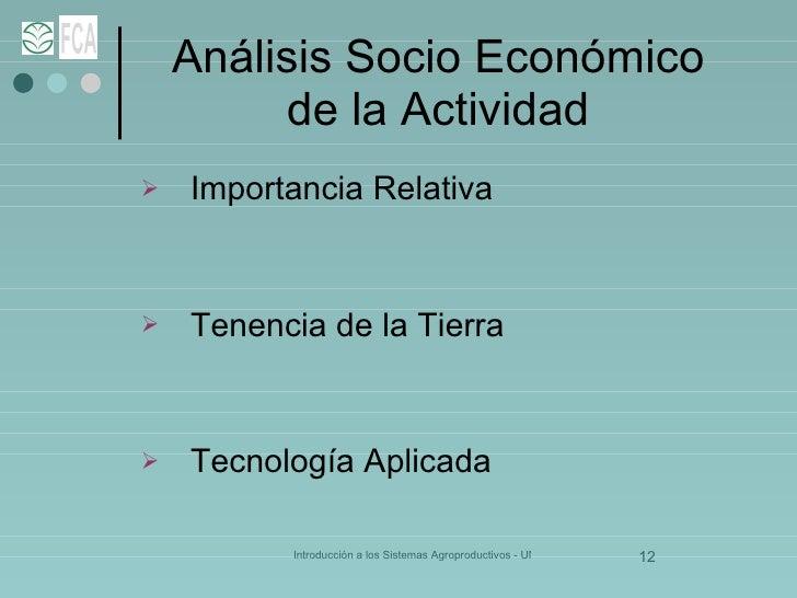 Análisis Socio Económico de la Actividad <ul><li>Importancia Relativa </li></ul><ul><li>Tenencia de la Tierra </li></ul><u...