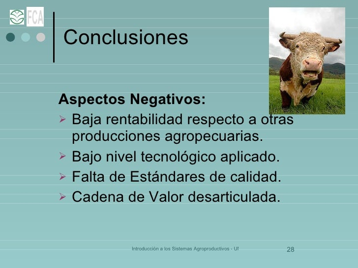 Conclusiones <ul><li>Aspectos Negativos: </li></ul><ul><li>Baja rentabilidad respecto a otras producciones agropecuarias. ...