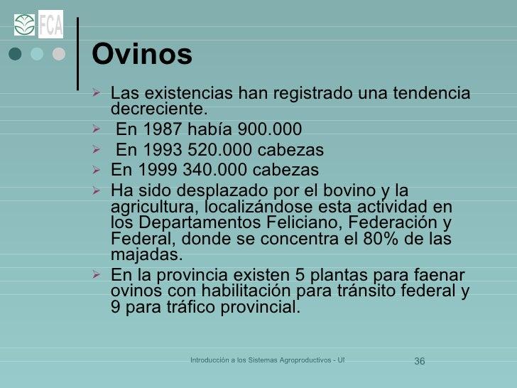 Ovinos <ul><li>Las existencias han registrado una tendencia decreciente. </li></ul><ul><li>En 1987 había 900.000 </li></ul...