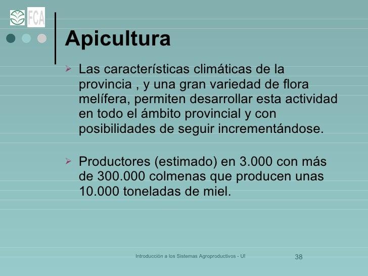 Apicultura <ul><li>Las características climáticas de la provincia , y una gran variedad de flora melífera, permiten desarr...