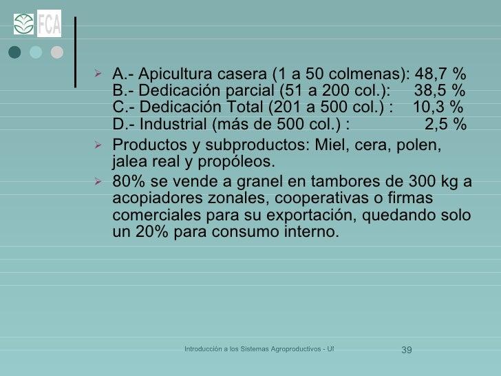 <ul><li>A.- Apicultura casera (1 a 50 colmenas): 48,7 % B.- Dedicación parcial (51 a 200 col.):  38,5 % C.- Dedicación Tot...