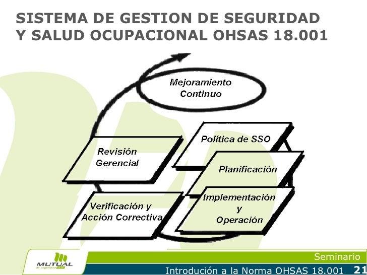 SISTEMA DE GESTION DE SEGURIDADY SALUD OCUPACIONAL OHSAS 18.001                                            Seminario      ...