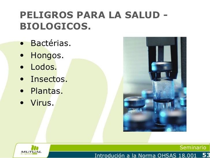 PELIGROS PARA LA SALUD -BIOLOGICOS.•   Bactérias.•   Hongos.•   Lodos.•   Insectos.•   Plantas.•   Virus.                 ...