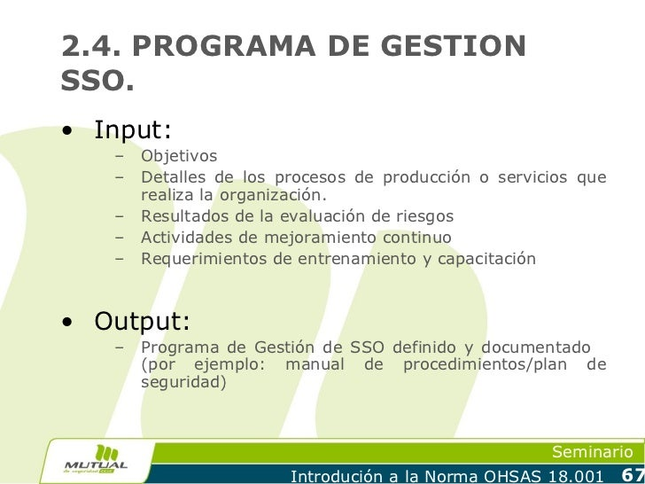 2.4. PROGRAMA DE GESTIONSSO.• Input:   –   Objetivos   –   Detalles de los procesos de producción o servicios que       re...