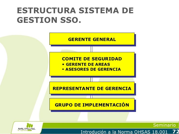 ESTRUCTURA SISTEMA DEGESTION SSO.          GERENTE GENERAL        COMITE DE SEGURIDAD        • GERENTE DE AREAS        • A...