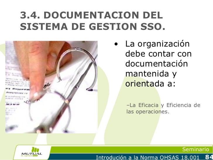 3.4. DOCUMENTACION DELSISTEMA DE GESTION SSO.                  • La organización                    debe contar con       ...
