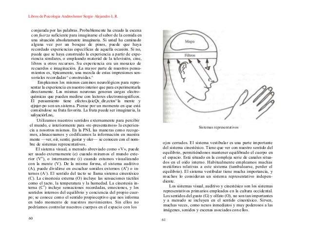 Introduccion a la pnl joseph o connor pdf