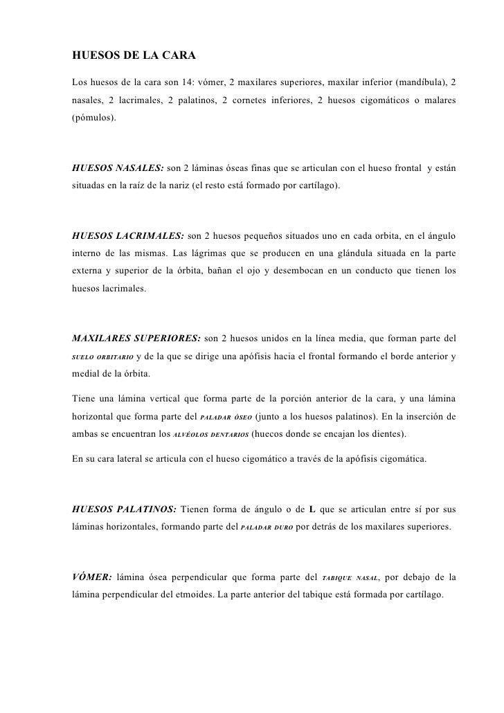 Vistoso Canciones Para La Anatomía Del Hueso Colección de Imágenes ...