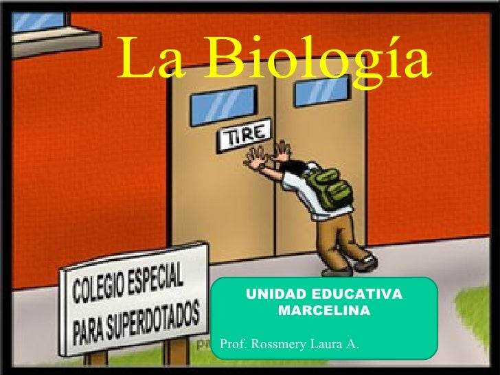 UNIDAD EDUCATIVA       MARCELINAProf. Rossmery Laura A.