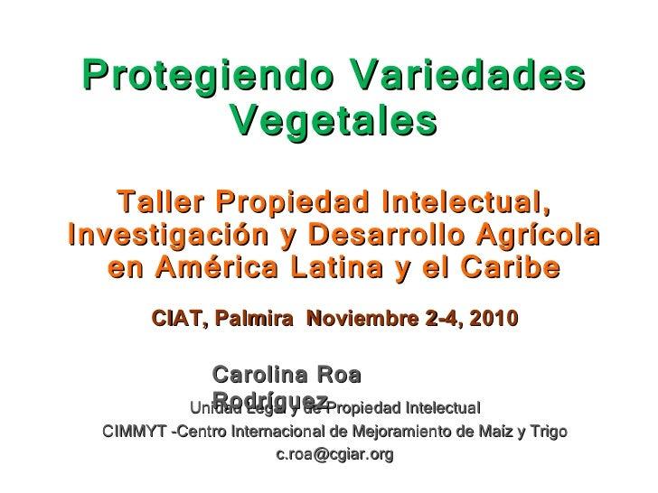Protegiendo Variedades Vegetales Unidad Legal y de Propiedad Intelectual CIMMYT -Centro Internacional de Mejoramiento de M...