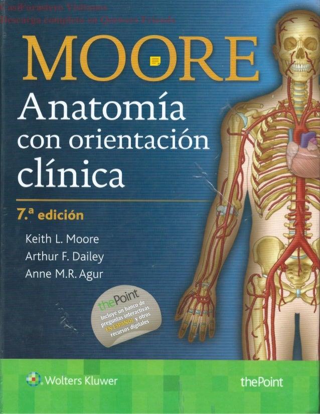 Encantador Anatomía Keith Moore Adorno - Anatomía de Las Imágenesdel ...