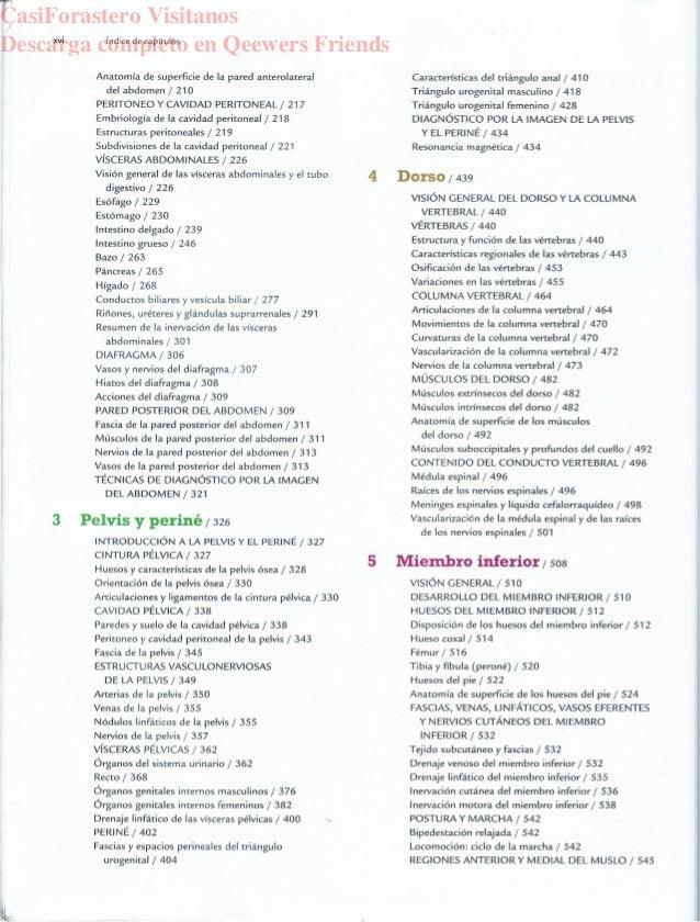 ANATOMIA CON ORIENTACION CLINICA moore anatomia 7a Edicion 2017