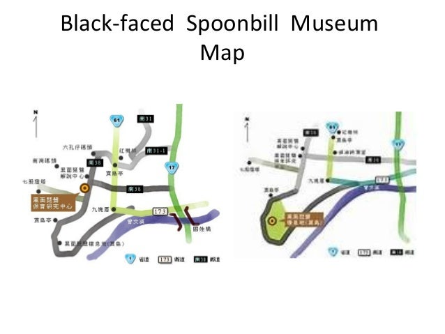 Black-faced Spoonbill Museum Map