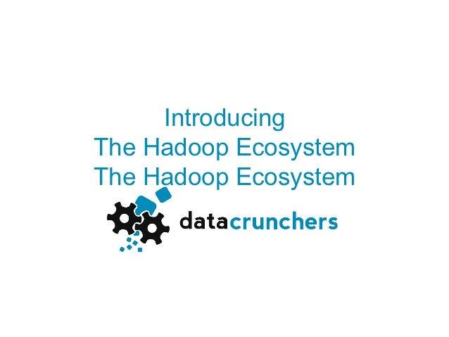 IntroducingThe Hadoop EcosystemThe Hadoop Ecosystem