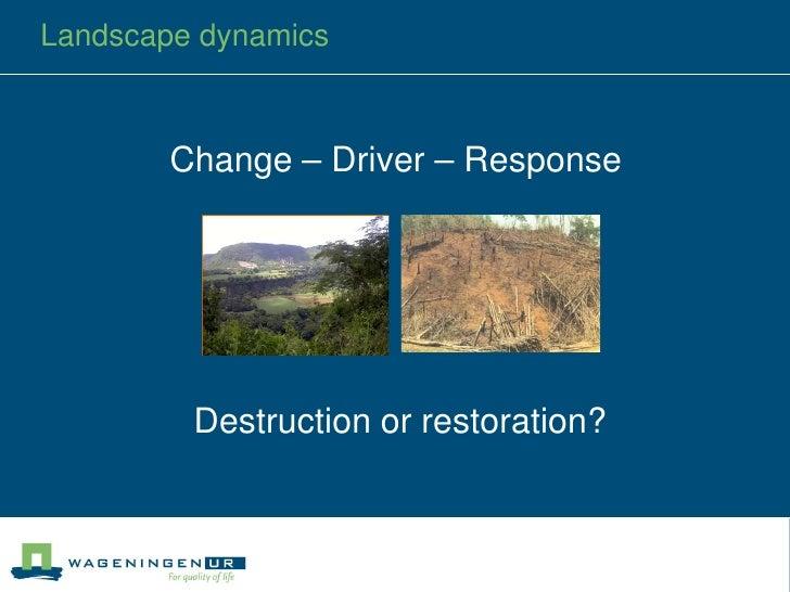 Culture and Dynamics