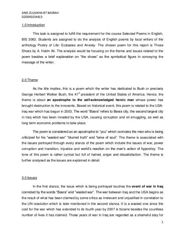 Descriptive essay on iraq
